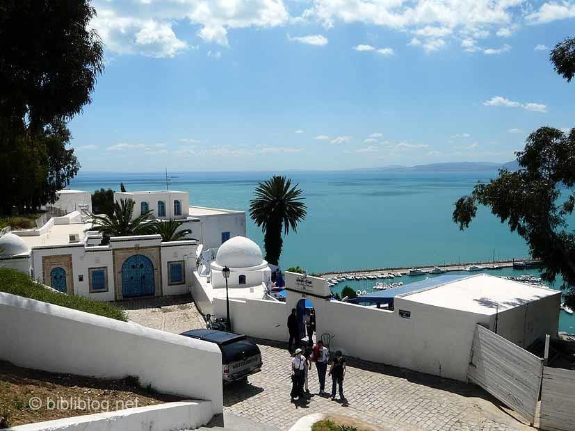 café-délices-tunisie-sidi