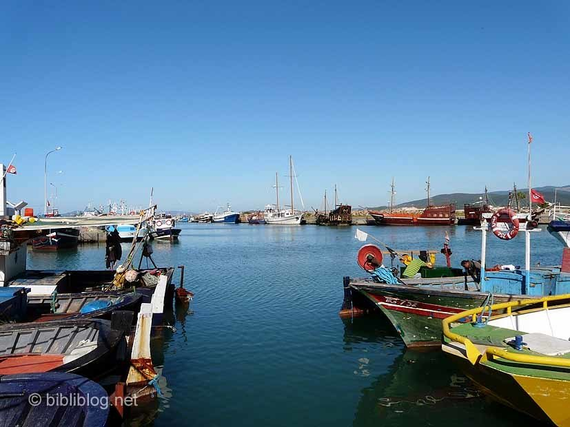 tabarka-port