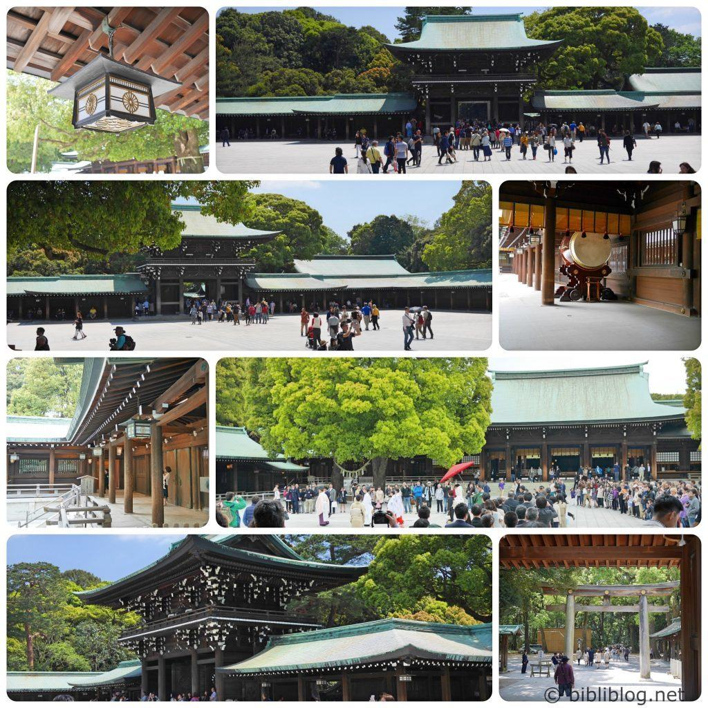 sanctuaire-yoyogi-tokyo