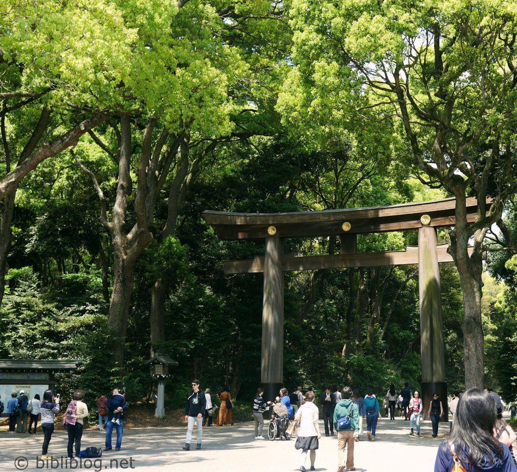 torii-yoyogi