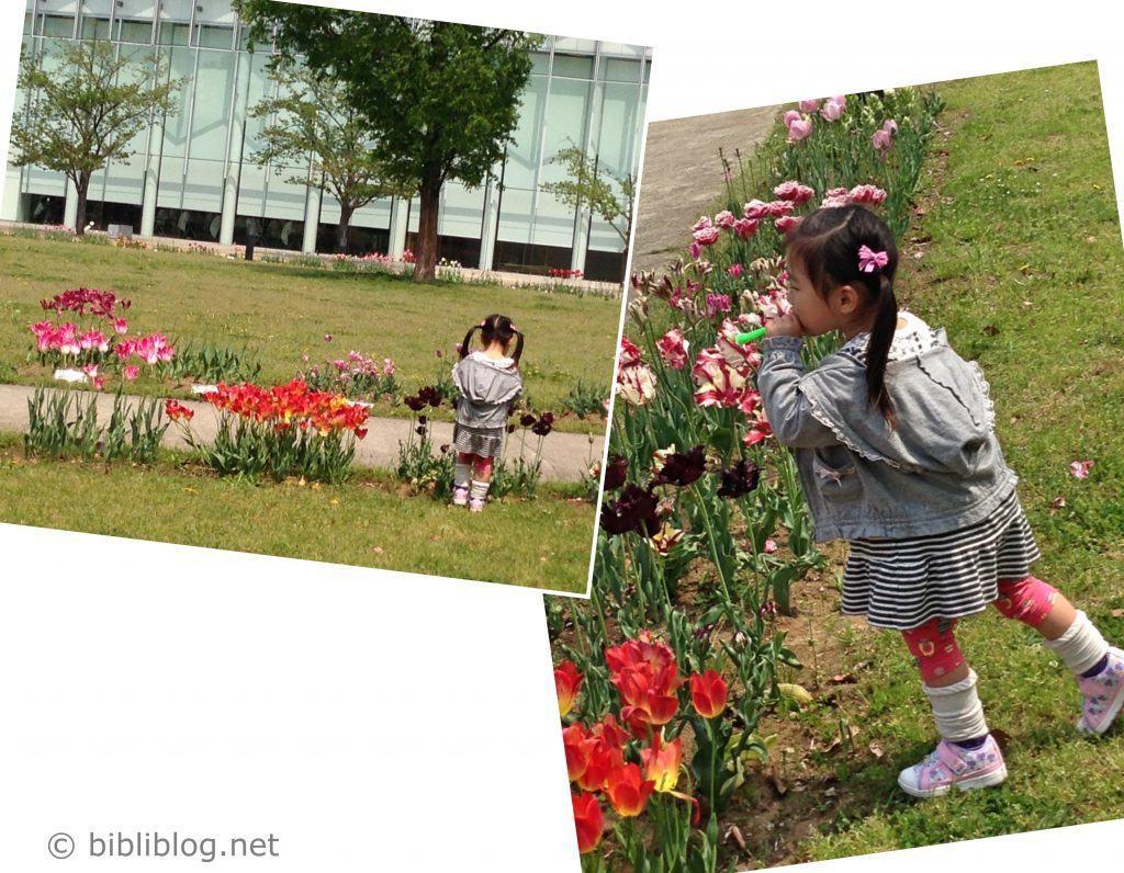 fillette-fleur-Tokyo