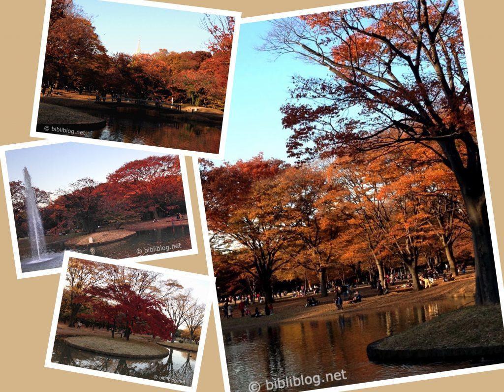 montage-yoyogi-park-tokyo-automne