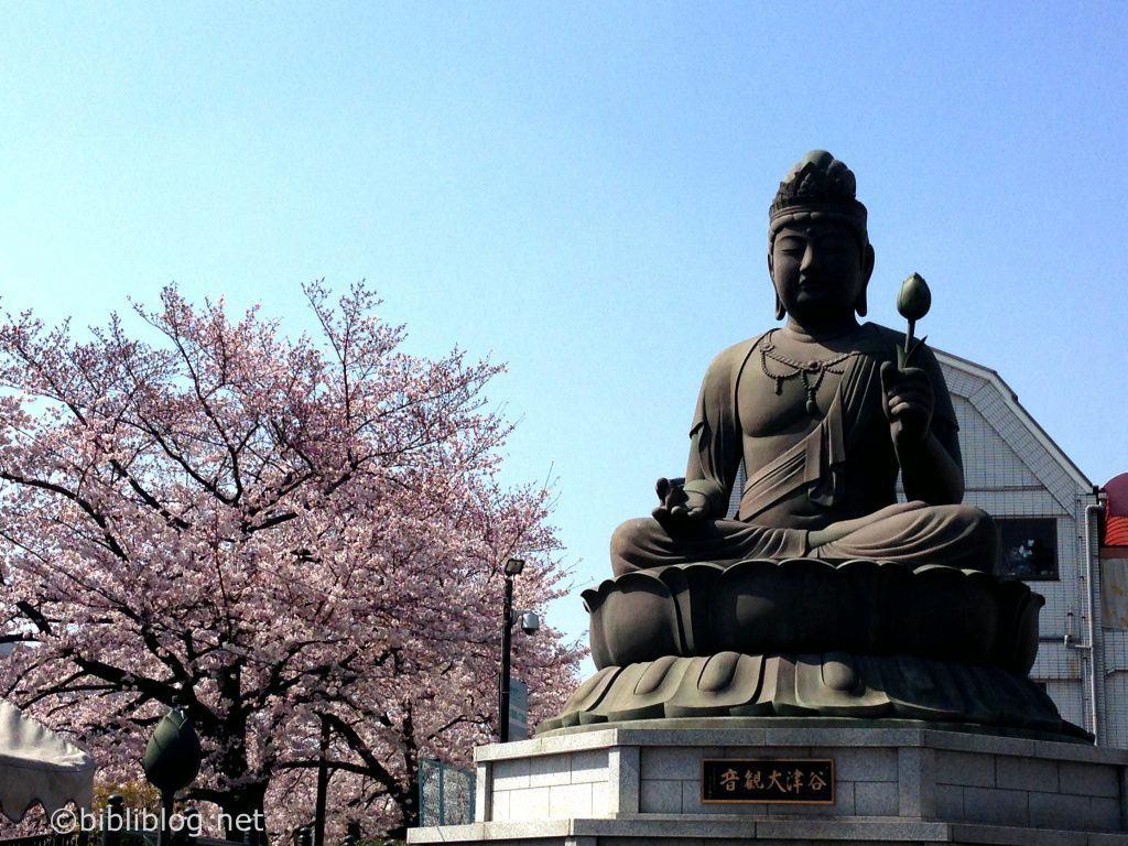 sakura-bouddha-tokyo