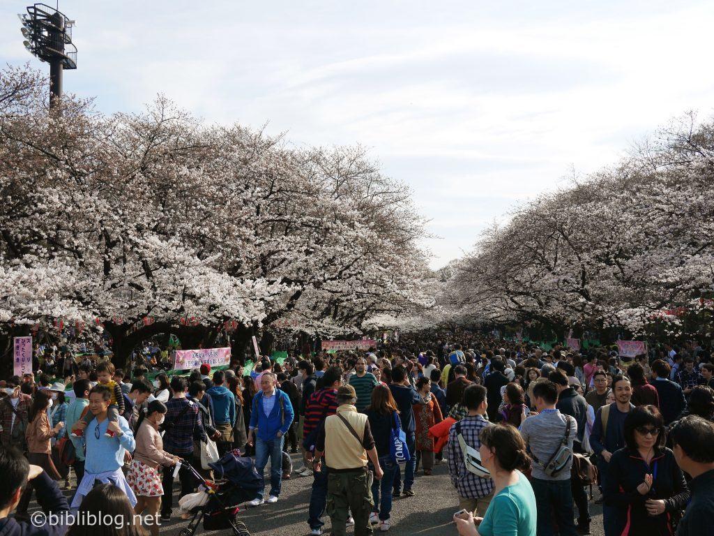 ueno-tokyo-sakura-foule