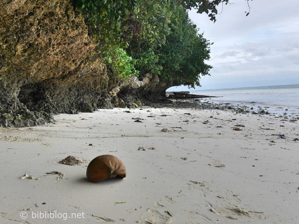 plage-panglao