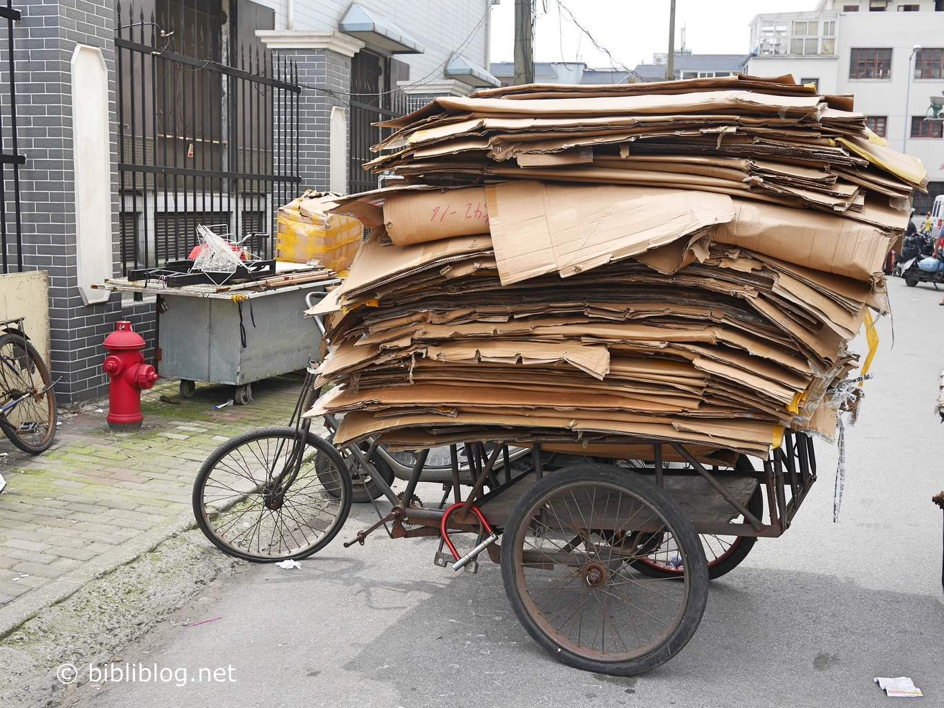 shanghai-transport-cartons