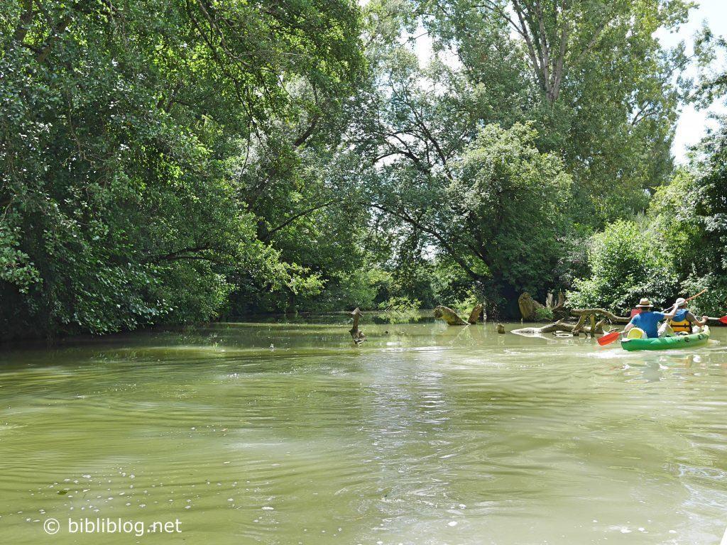 canoe-gers-2