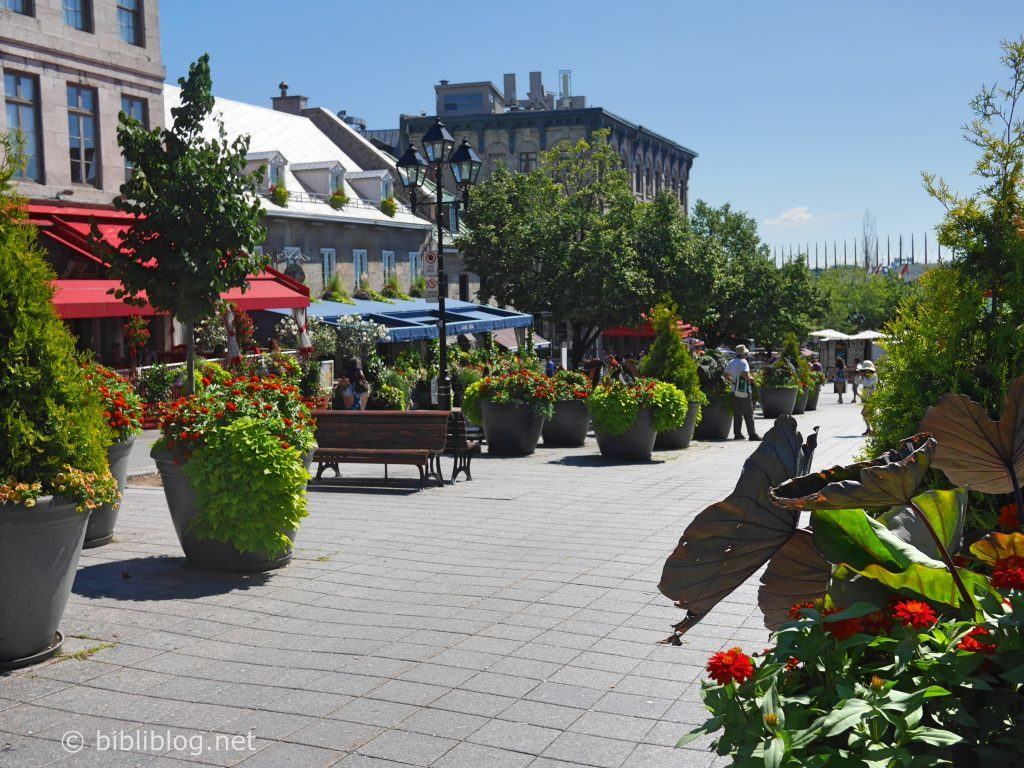 montreal-place-jacques-cartier