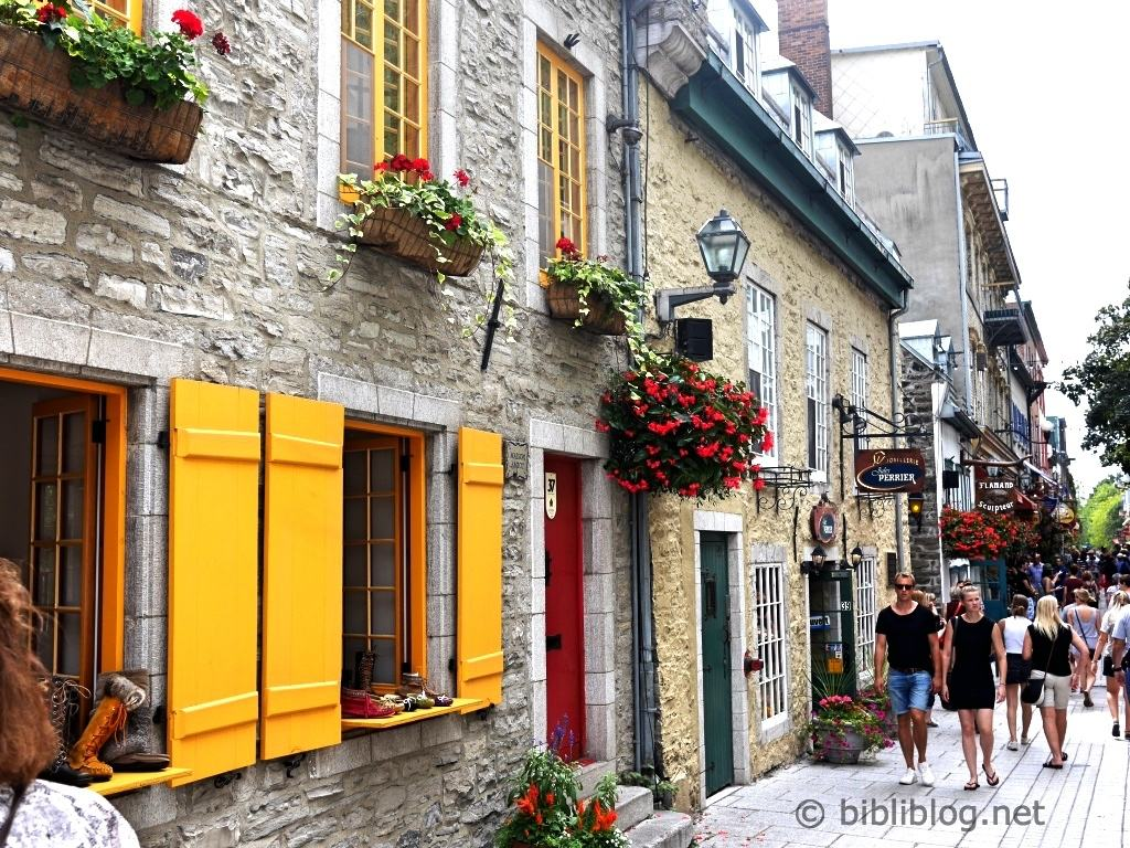 rue-coloree-quebec