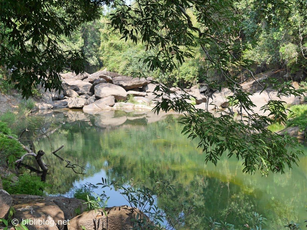 laos-jungle-tad-xai-1