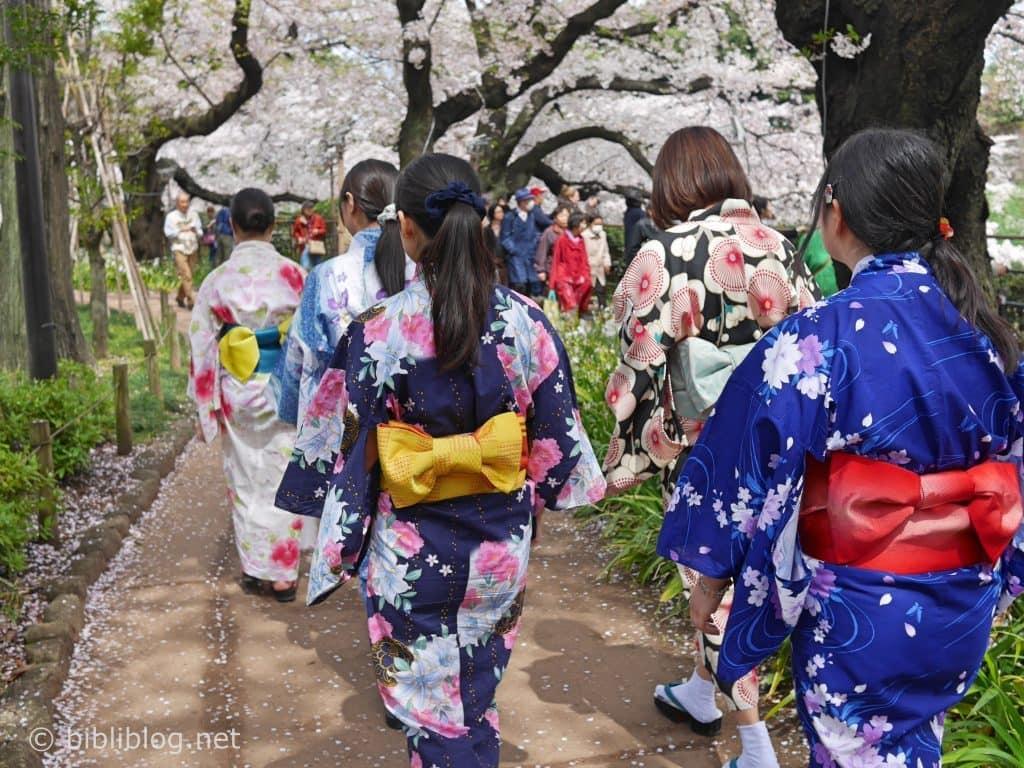 kudanshita-jf-kimonos-dos