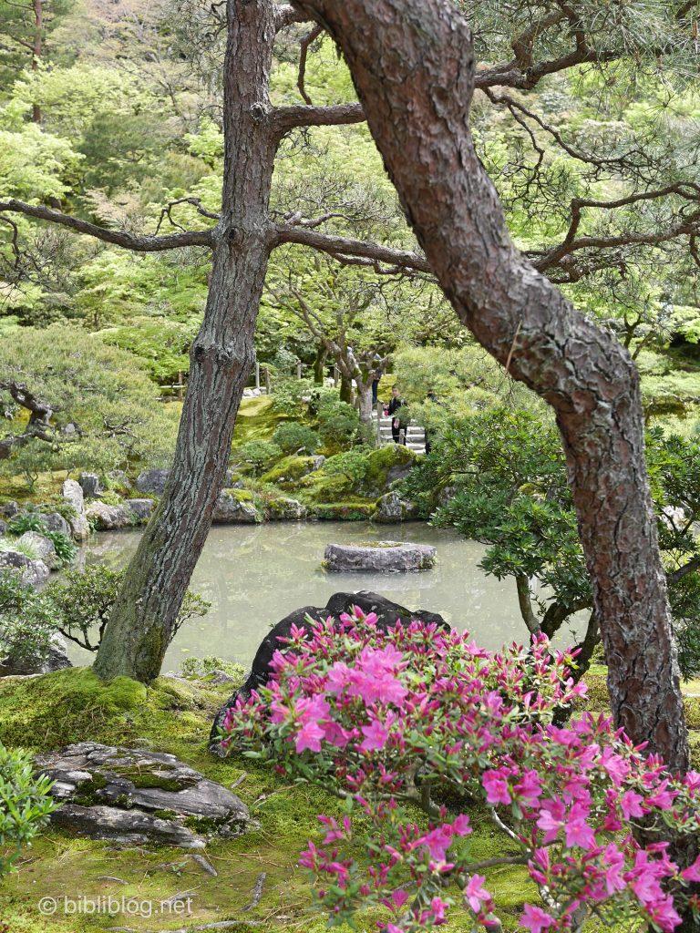kyoto-ginkakuji-nature