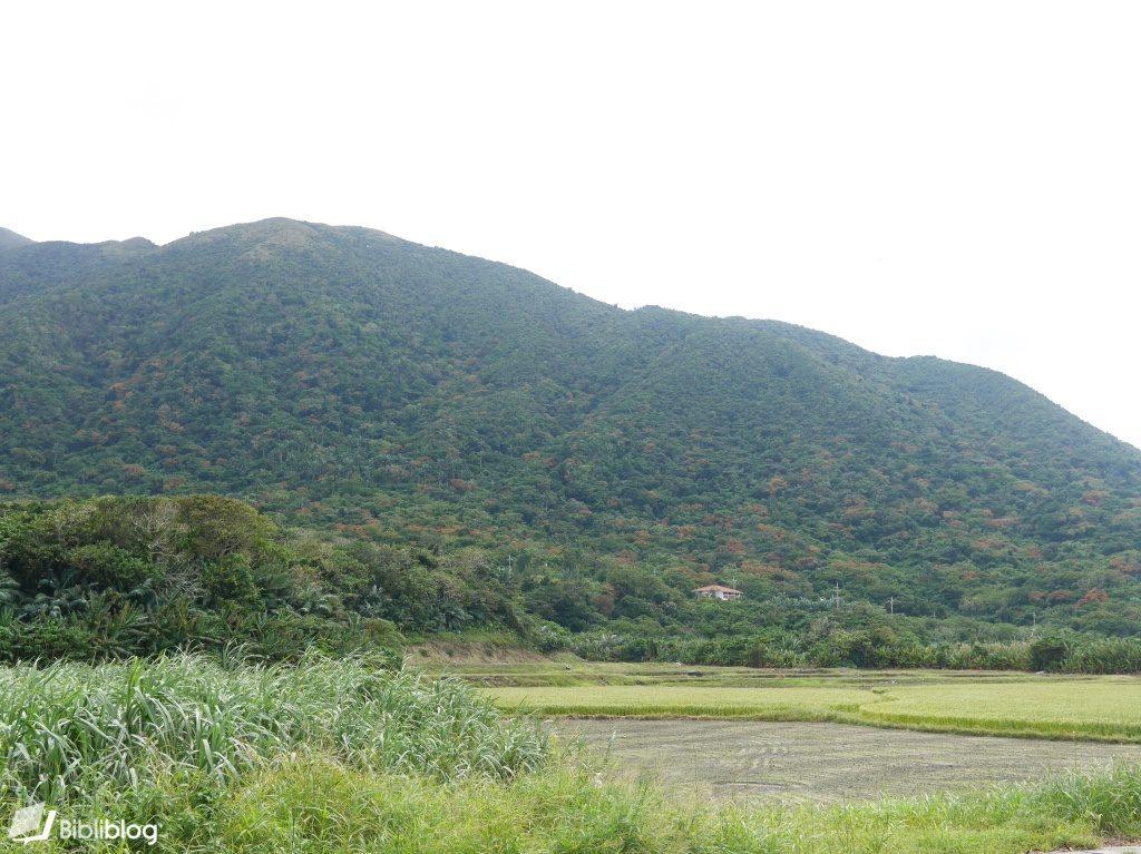 Yonehara-montagne