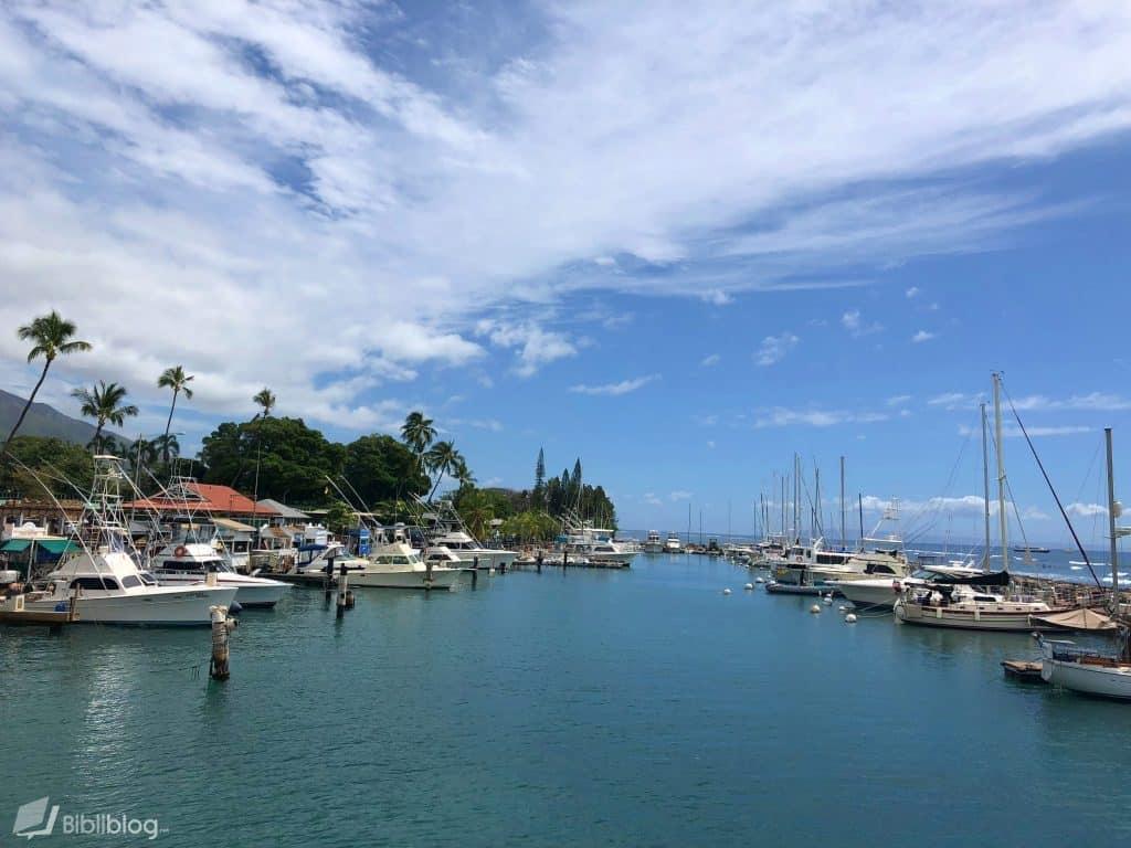 Maui-port