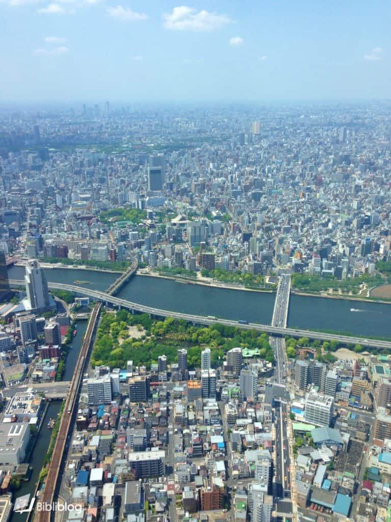Tokyo vue depuis la Tokyo Tower
